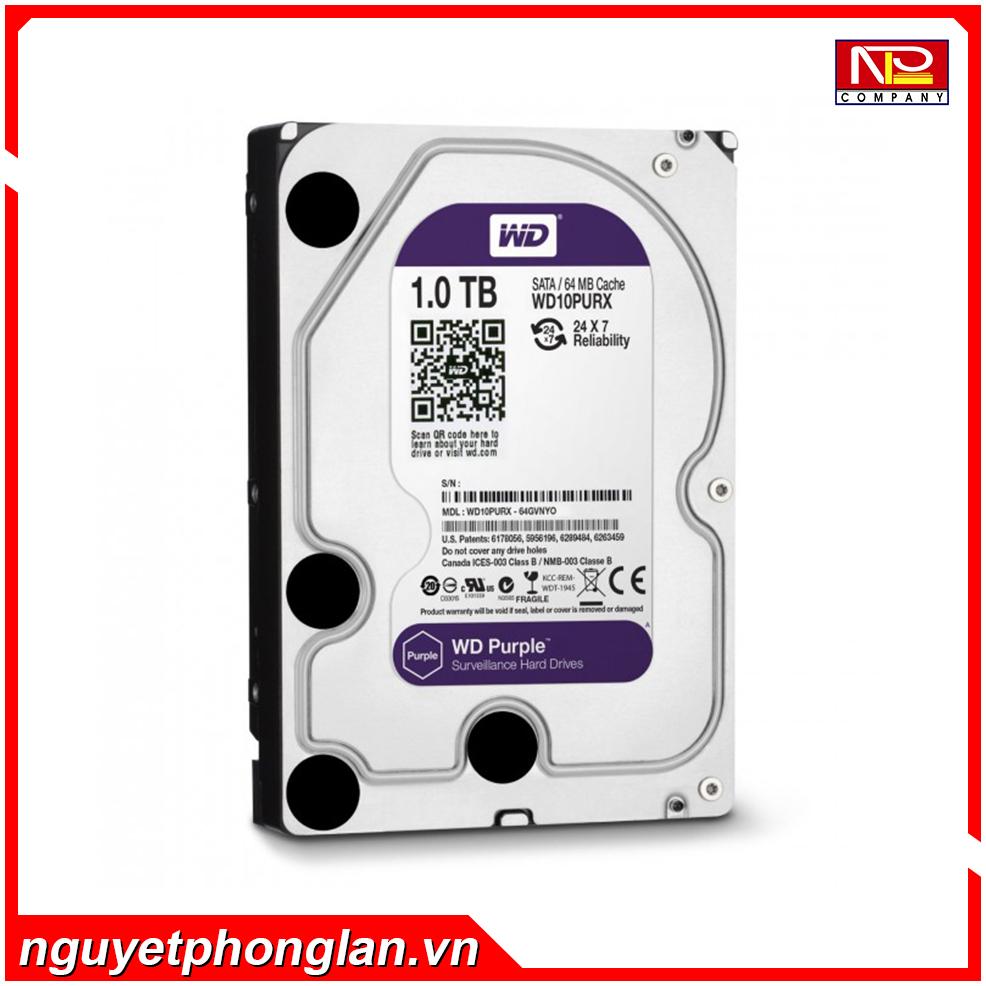 Ổ cứng Western Digital Purple 1TB 64MB Cache